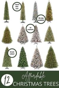 budget friendly christmas trees