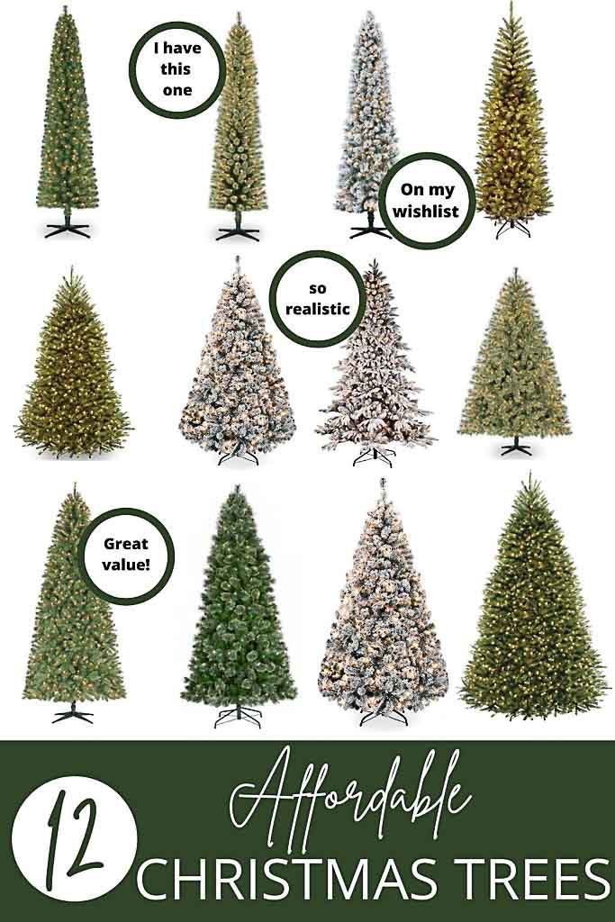 budget friendly christmas trees
