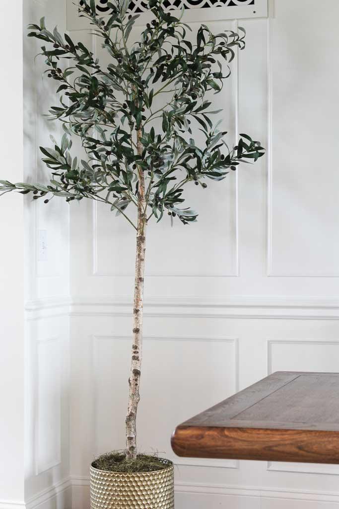 DIY Olive Tree